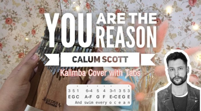 You Are The Reason