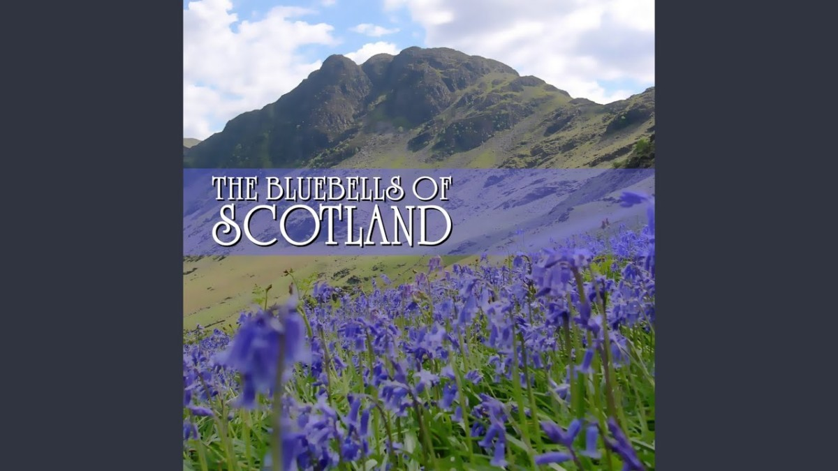 maxresdefault-2020-05-20T193026.537 Blue Bells of Scotland (Easy)