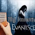 thumb-62-d00d4deb-120x120 Evanescence - My Immortal