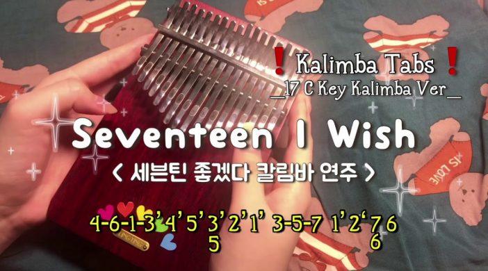 Seventeen - I Wish