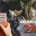 🧝Sacred Grove - Zelda: Twilight Princess