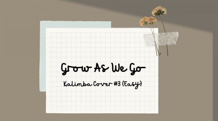 Grow-As-We-Go-17272203-702x390 Grow As We Go