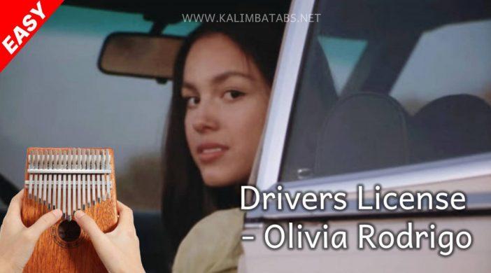 thumbnail-11-f56b2e7e-702x390 🚗 drivers license - Olivia Rodrigo