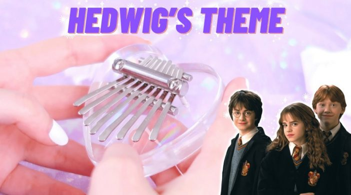 maxresdefault-57320956-702x390 ✨Harry Potter - Hedwig's Theme