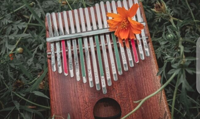 inbound3344447663255898549-6a59146f-651x390 Kalimba Heals and Redirects