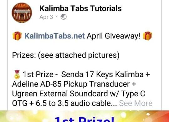 received_126123832840762-938c55ef-540x390 A girl who wants to have a kalimba