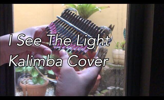 B1A36A17-8ABF-48F8-8D13-9FF2EBDB8414-a7be1ece-640x390 I See the Light - Tangled OST