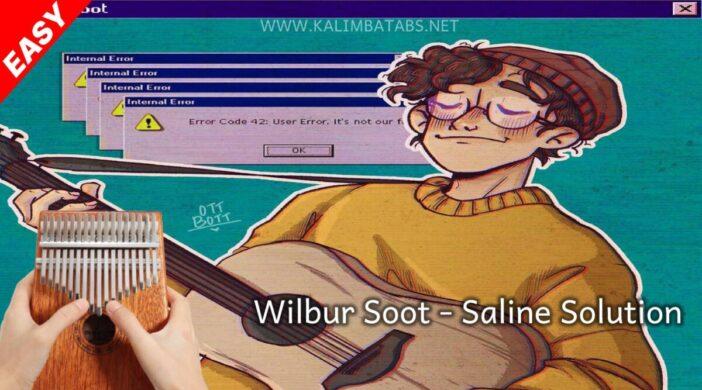 thumbnail-95-cf64d8b7-702x390 🧂 Wilbur Soot - Saline Solution