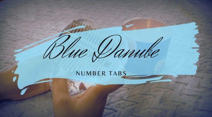 z2588753203222_170b5a3f360696a3a274db4de192459c-8e34c0c1-702x390 Blue Danube Waltz - Johann Strauss II