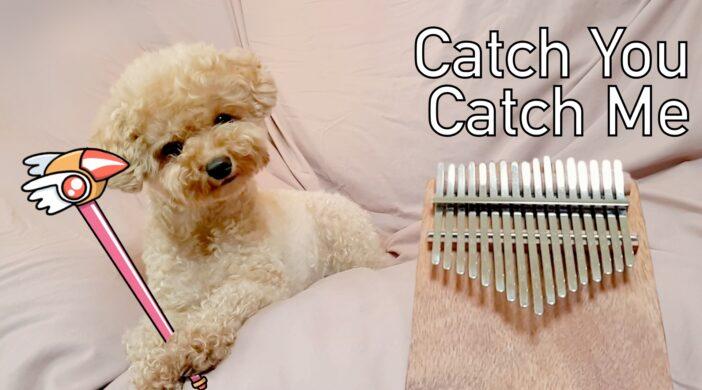 9673F96E-B463-44D2-9423-5FA706765352-e6d68e86-702x390 Cardcaptor Sakura - Catch you Catch me 카드캡터체리