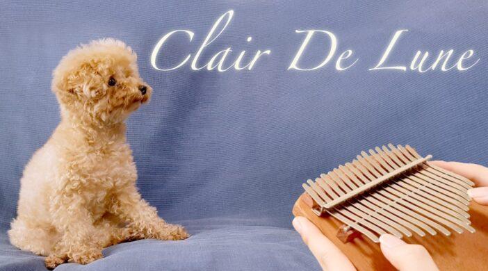 0014E3F0-C5B7-42AB-9C87-7A0AAE0A1645-a03229fb-702x390 Claire De Lune, Debussy 달빛 드뷔시