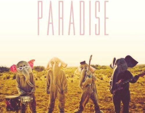 IMG_20211008_211817-c879ceed-500x390 Paradise