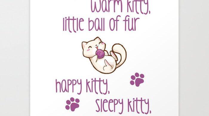 the-big-bang-theory-soft-kitty-prints-686833b5-700x390 Soft Kitty from Sheldon on The Big Bang Theory